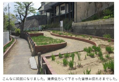 あやめ公園清掃3.jpg