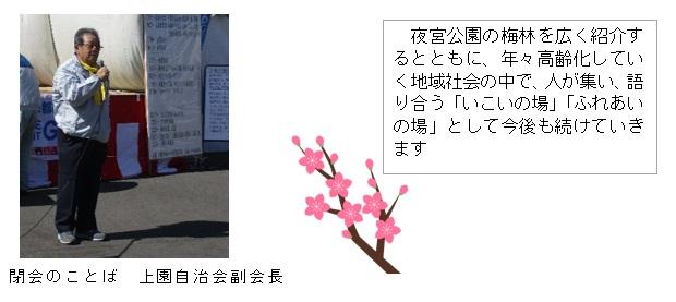 梅まつり9.jpg